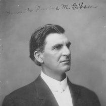 Image of Flavius M.Gibson
