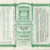 Image of Back of Randolph Gin stock certificate