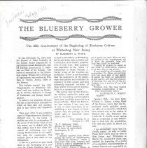 Image of White History of Blueberry Development