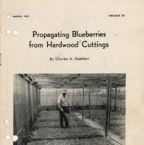 Image of Propagating Blueberries From Cuttings