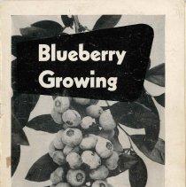 Image of USDA Bulletin No 1951A