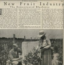 Image of A New Fruit Industry