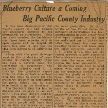 Image of Blueberry Culture- Pacific County