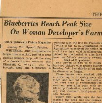 Image of Blueberry Industry