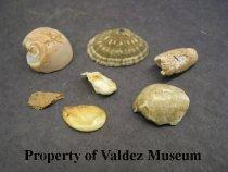 Image of 1978.394.0003 - Artifact, Unidentified