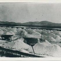 Image of plummer salt works
