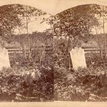 Image of 10-Henry Antes' Grave - 1900