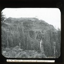 Image of 2004.2.2007.997 - Transparency, Lantern-slide