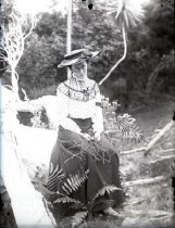Image of 2004.2.97.1186 - Negative, Glass-plate