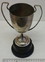 Image of 2016.12.4 - Trophy