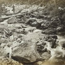 Image of Postcard - Postcard Black and White postcard of Mad Tom Brook, East Dorset, by Charles Parker.