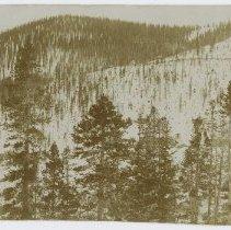 Image of SHS-P.331.1 - Photograph