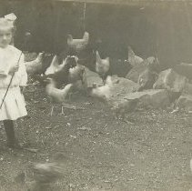Image of Unknown child with chickens, circa 1910s. - Photograph