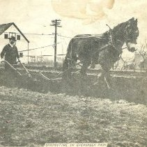 Image of John Luth plowing a field, 1951. - Print, Photographic
