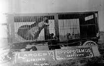 Image of CWi 1309 - Gollmar Bros. Circus