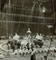 Image of CWi 3135 - Ringling Bros and Barnum & Bailey Circus