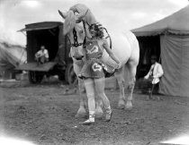 Image of CWi 1206 - Sells-Floto Circus