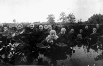 Image of CWi 424 - Ringling Bros. Circus Clowns in a Lily Pond