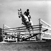 Image of CWi 466 - Jumping Horses