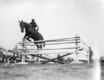 Image of CWi 486 - Jumping horses