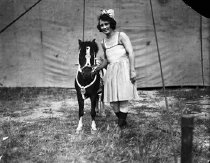 Image of CWi 536 - Pony and Performer