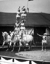Image of CWi 764 - Loyal-Repenski troupe