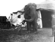 Image of CWi 876 - Watering an Elephant