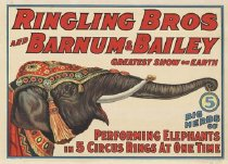 Image of CWi 17003 - Ringling Bros and Barnum & Bailey Circus