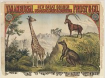 Image of CWi 17011 - Van Amburgh, Frost & Co's New Great Golden Menagerie, Circus