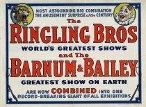 Image of CWi 18286 - Ringling Bros. Barnum & Bailey