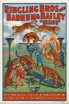 Image of CWi 18340 - Ringling Bros. Barnum & Bailey