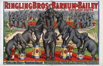 Image of CWi 20942 - Ringling Bros. Barnum & Bailey Circus