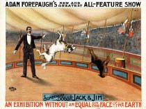 Image of CWI 14063 - Adam Forepaugh Circus