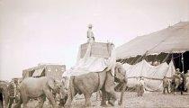 Image of CWi 9034 - Al G. Barnes Circus