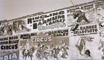 Image of CWi 9046 - Al G. Barnes Circus