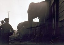 Image of CWi 5016 - Hagenbeck-Wallace Circus