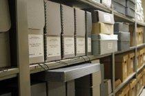 Image of CWM Mss 4, CWM Ph 20 - Evans, Merle, 1892-1987 Papers, 1909-1988