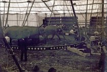 Image of CWi 5118 - Hagenbeck Wallace Circus