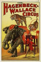 Image of CWi 17334 - Hagenbeck-Wallace Circus