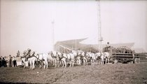 Image of CWi 9343 - Hagenbeck-Wallace Circus