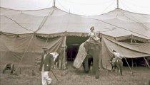 Image of CWi 13783 - Mills Bros. Circus