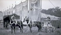 Image of CWi 9388 - Hagenbeck-Wallace Circus
