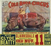 Image of CWi 16379 - Cole Bros. Circus
