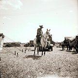 Image of CWi 11582 - Mills Bros. Circus