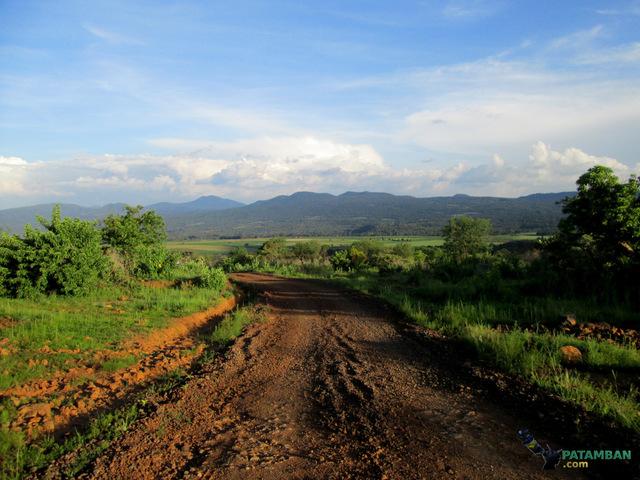 El camino de Patamban hacia Paramo (Dámaso Cárdenas)