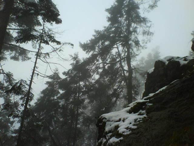 Niebla y mas nieve