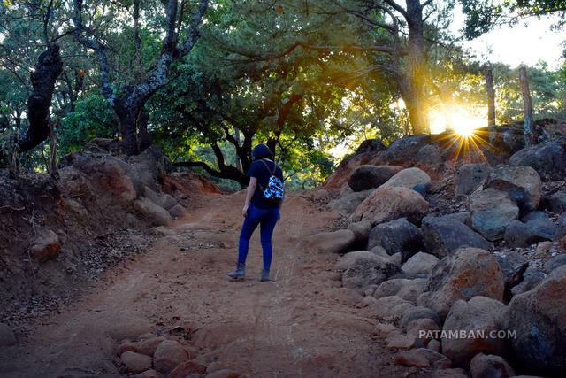 Caminando por los bosques de Patamban