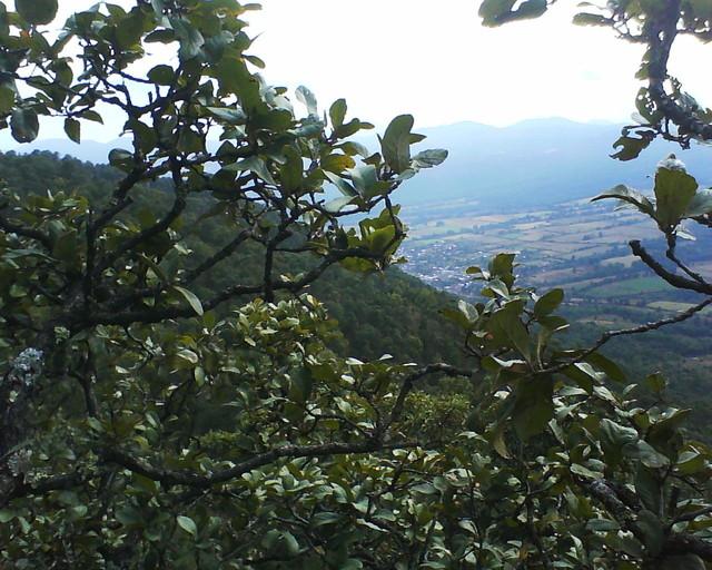 Cerro tres marias patamban