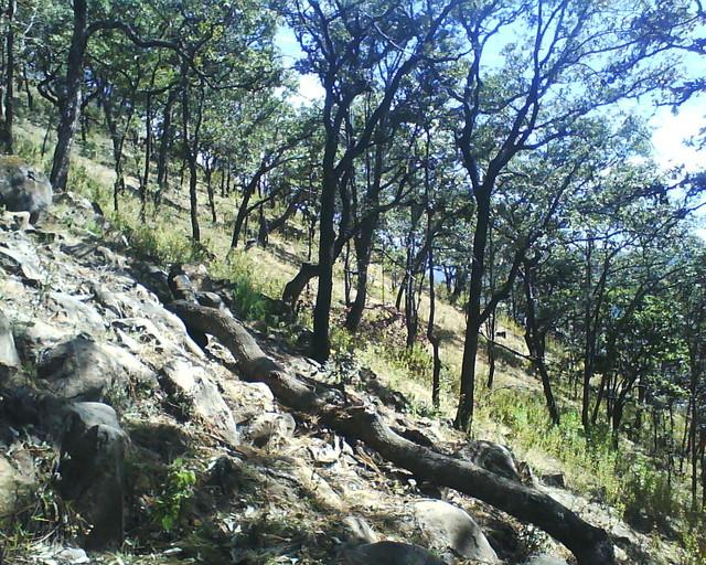 inclinacion cerro tres marias patamban