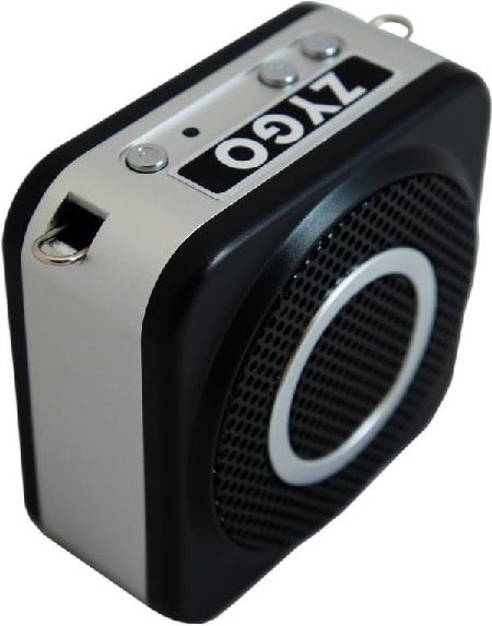 ZYGO Wireless Voice Amplifier